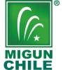 BIENVENIDOS A MIGUN CHILE