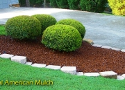 Mulch Decorativo fya chile