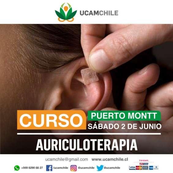 Auriculoterapia, fitoterapia y hierbas medicinales